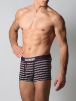 Трусы-боксеры мужские ICMBX 681604-3