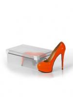 Коробка для хранения женских туфель со съемной крышкой 30*18*10 L102-101