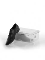 Коробка для хранения мужских туфель со съемной крышкой 34*21*12 L102-105
