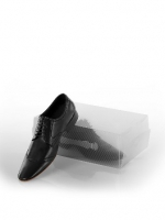 Коробка для хранения мужских туфель 34*21*12 L102-107